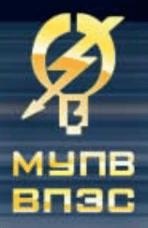 """МУП """"Владивостокское предприятие электрических сетей"""""""